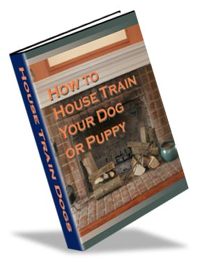 How to House Train Your Dog How to house train a dog or puppy even if you have failed in the past.